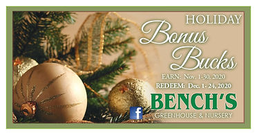 benchs bonus bucks holiday 2020 front.jp