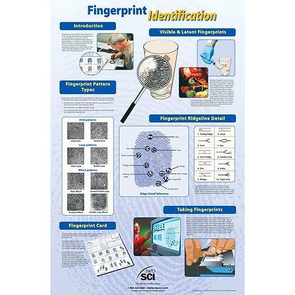 Fingerprint Identification Chart