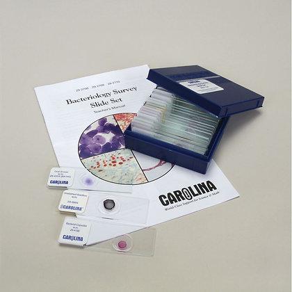 Bacteriology Survey Microscope Slide Set 3