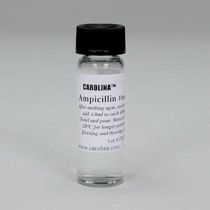 Ampicillin Solution, 4 mL