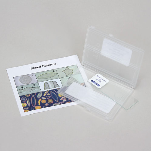Discovering Diatoms Self-Study Unit, Microscope Slide Set