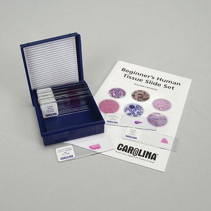 Beginner's Human Tissue Microscope Slide Set