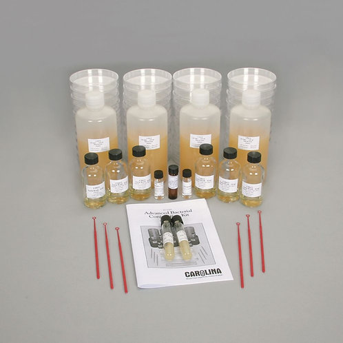 Advanced Bacterial Conjugation Kit (with perishables)