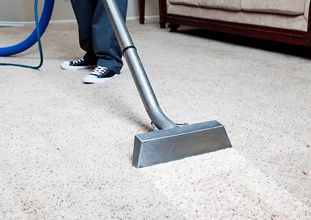 carpet clean.png