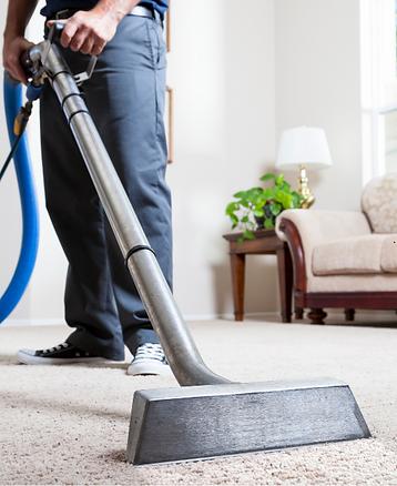 carpet cleaner.png