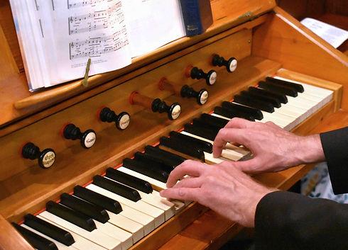 Organ.jpg