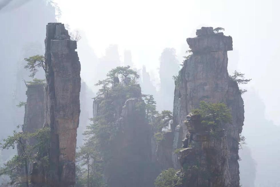The Avatar Mountains, Zhangjiajie, Hunan, China