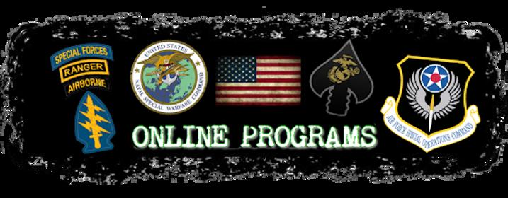 online programs banner.png