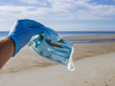 'More masks than jellyfish': coronavirus waste ends up in ocean