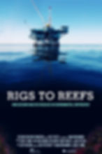 Rigs To Reefs DAS SDP Max Henrion