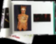 autumn salon catalog with alexandra mas' art work