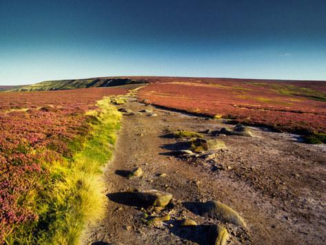 Ancient Drove Road, North Yorkshire Moors
