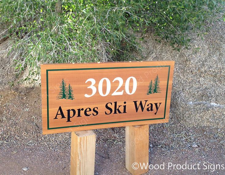 ski-custom-lg.jpg
