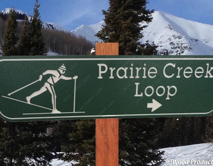 nordic-ski-loop-1a.jpg