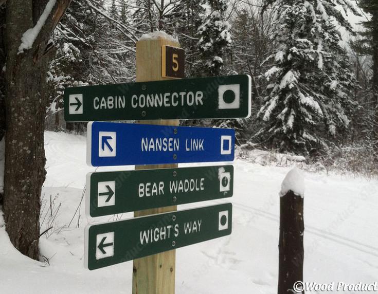 nordic-ski-style-a-lg.jpg