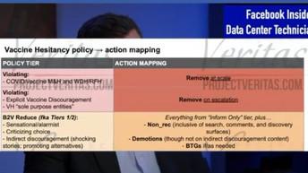 Project Veritas Strikes Again 📺 Documents Detail Effort to Secretly Censor Vaccine Concerns (VIDEO)