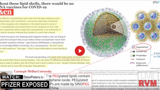 Former Pfizer Official: Toxic Graphene Oxide 'Absolutely' Present in Covid Shots - Must See!