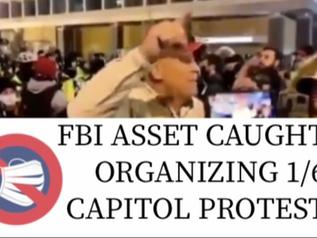 🎥 New Videos Further Point to FBI Assets Staging Capitol Protest
