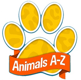 animalsaz_16x9_transparent.png
