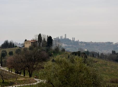 """La Vernaccia di San Gimignano e la sua """"Toscanitudine"""""""