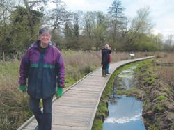 Wolvey Environmental Group, Wolvey Wetland