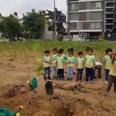 Children's Plantation drives