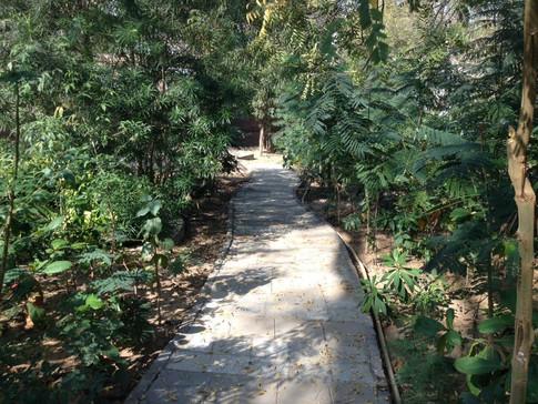 Shreyas foundation phase 1