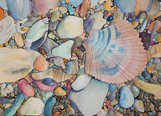 Corona Shells