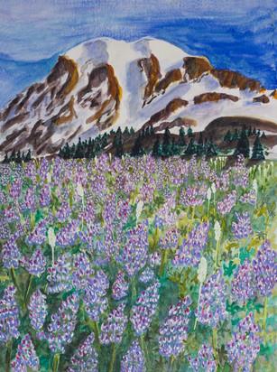 Mt. Rainier Lupins