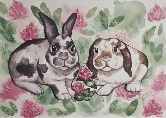 Bunnies in Clover