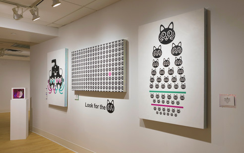 Photo of Cat Eye Test 10 and 11 on Wall