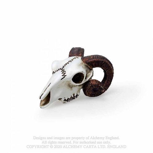 Ram's Skull Miniature