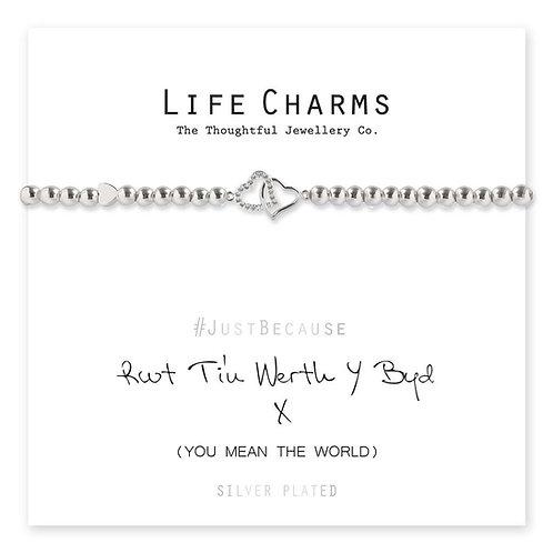 Rwyt Ti'n Werth Y Byd Life Charm Bracelet