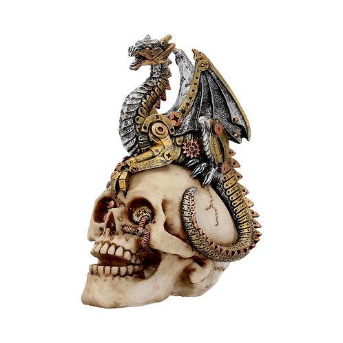 Dragon's Grasp