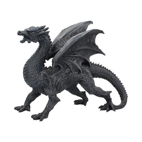 Dragon Watcher