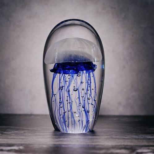 Blue Box Jellyfish Paperweight