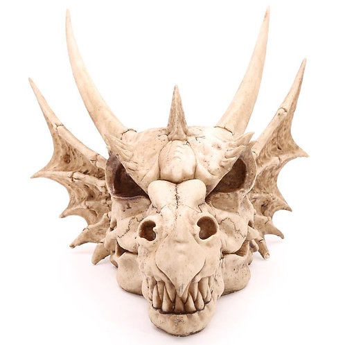 Huge Wall Mounted Dragon Skull