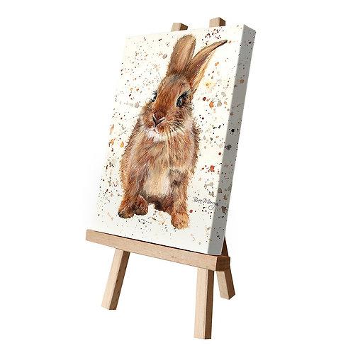 Bella Canvas Cutie