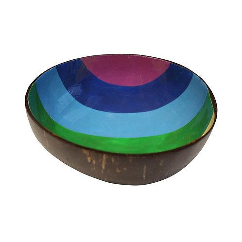 Rainbow Coconut Shell Bowl