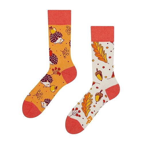 Autumn Hedgehog Good Mood Socks