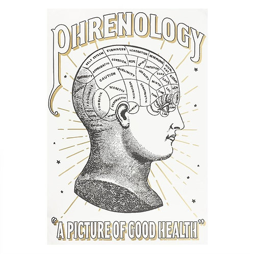 Colour-In Phrenology Poster
