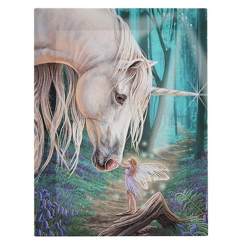 Fairy Whispers Canvas Plaque