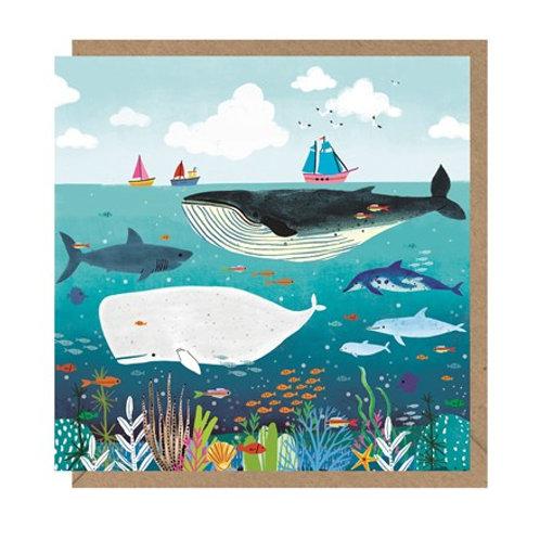 """""""Whales"""" Card"""