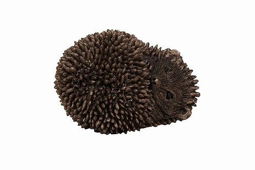 Dizzy Hedgehog