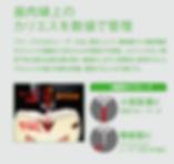 スクリーンショット 2020-03-22 23.44.37.png