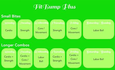 FitBump Plus Schedule