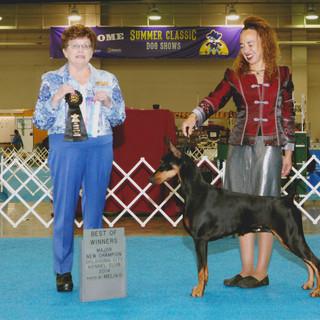 Pearl Dallas Champion.jpg