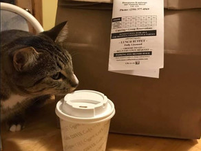 Maurya's is now Kitty approved! - THANK YOU!