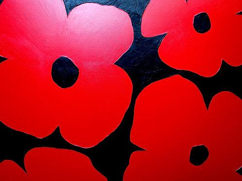 Four Poppies