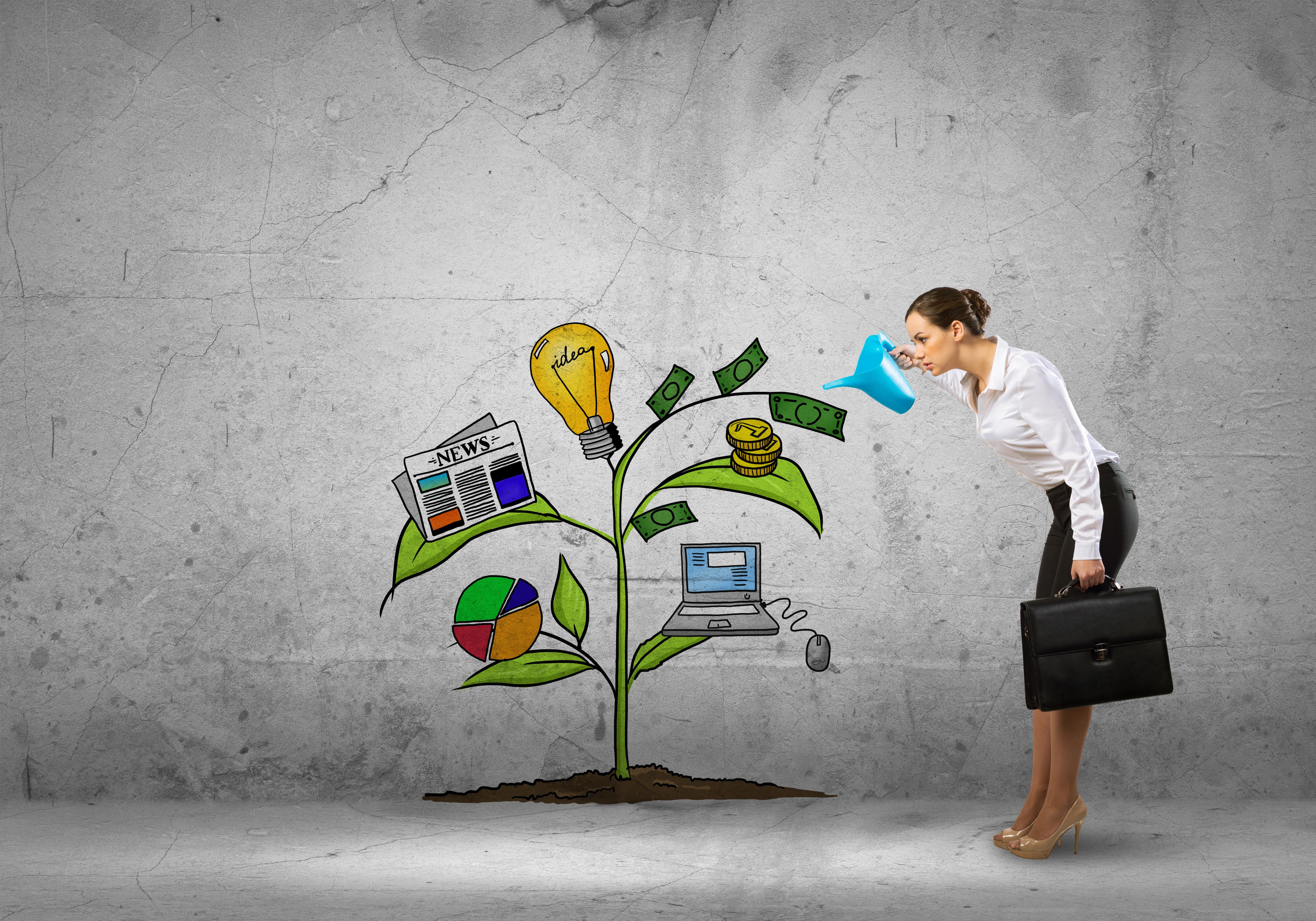 Career Management Coaching